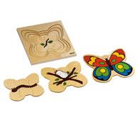 Puzzles ciclos de vida la mariposa la unidad