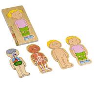 Puzzles el cuerpo humano niña el conjunto