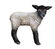 Decoracion vinilo la oveja