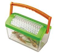 Casa de insectos