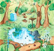 Alfombrilla mundo activo - bosque