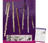 Poster flautas trav